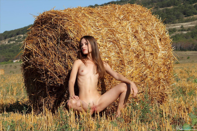 Русскую бабу на сеновале порно 15 фотография